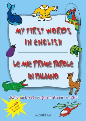 Dictionar bilingv englez-italian